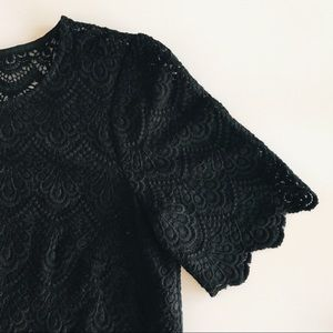 Madewell Broadway and Broome Scalloped Lace Top